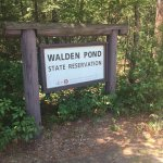 Photo de Walden Pond State Reservation