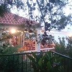 Villa pod borom Foto