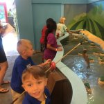 Mississippi Children's Museum-bild