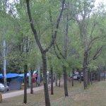 Zona de acampada bajo las cabañas