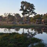 Landscape - Belmond Khwai River Lodge Photo