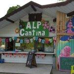 Alp cantina