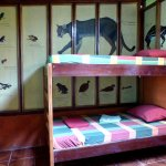 "Room ""Tapir"": Bunk bed"