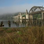 Siuslaw Bridge, which is just outside the coffee shop