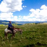 Top of Grass Mountain