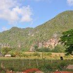 A proximité de l'hôtel : la vallée de Vinales, patrimoine mondial de l'UNESCO