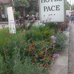 Foto de Hotel Pace