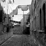Vinicio Tassani Photographer Foto