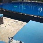 Danima Resort & Restaurant Foto