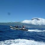 Andere Talassa boot nadat ze net een Blue Whale hebben gespot.