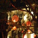 Photo de Frangipani Villa Hotel, Siem Reap