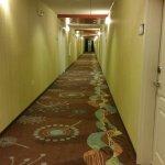 Foto de Hampton Inn & Suites Wilmington Christiana