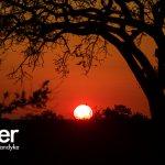 Sunset from an Umlani safari
