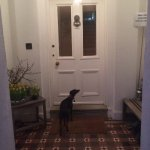 Even our dog felt at home!After a great diner in a nearby pub,Poppy went straight for the frontd