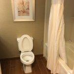 Hilton Garden Inn Atlanta NE/Gwinnett Sugarloaf Foto