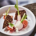 Lightly salted trout with sorrel, radishes, and horseradish cream