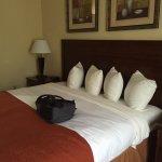 Photo de Country Inn & Suites By Carlson, Savannah Airport