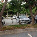 удобная парковка для вашей машины, бесплатная кстати