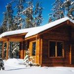 Bear cabin , winter