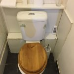 WHO uses wood toilet seats??????