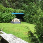 Conveniently located quiet campground and 12 bed hostel owned by eclectic electronics wiz gentle