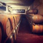 Foto de Mallorca Wine Tours