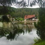 Photo of Bergseestuble Inh. Stephanie Weis