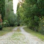 Foto di Tenuta di Canonica