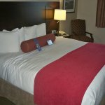 BEST WESTERN PLUS Stoneridge Inn & Conference Centre Foto