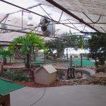 Foto de Colasanti's Tropical Gardens