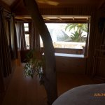 "There is a tree growing through the ""Tree House Suite. We did not stay in the room, but got to s"