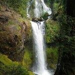 Falls Creek Falls Photo