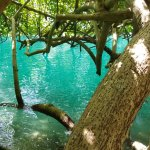 Foto de Blue Lagoon