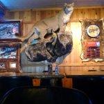 Foto di Lions Den Sports Bar & Restaurant