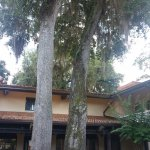 Foto de Travelodge Inn & Suites Tallahassee North