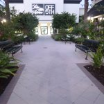 Benches, plants, and walkways  Town Center  near Saks