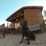 The middle cabin I used, my dog standing on the terrace.
