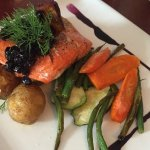 Wild sockeye salmon meal