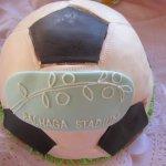 bachaga stadium cake