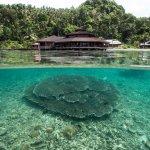 Photo de Kungkungan Bay Resort