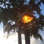 Staybridge Suites Tallahassee I-10 East Foto