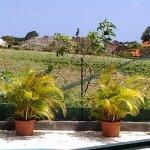 depuis la table a manger de la terrasse (villa citron)