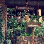 The Terrace Foto
