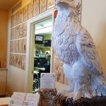 Front reception desk... business cards, elegant standing eagle, interior of hotel business offic