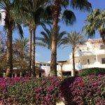 Foto Iberotel Palace