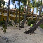 Foto de Bimini Big Game Club Resort & Marina