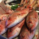 The Fish Market Foto