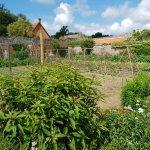 Le Jardin Potager de Miromesnil