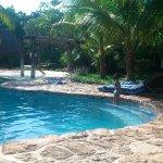 Photo de Hotel Villas Delfines