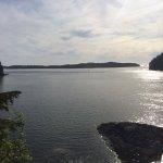 Foto de Duffin Cove Resort